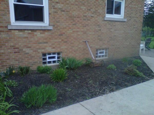 32x18 in basement windows